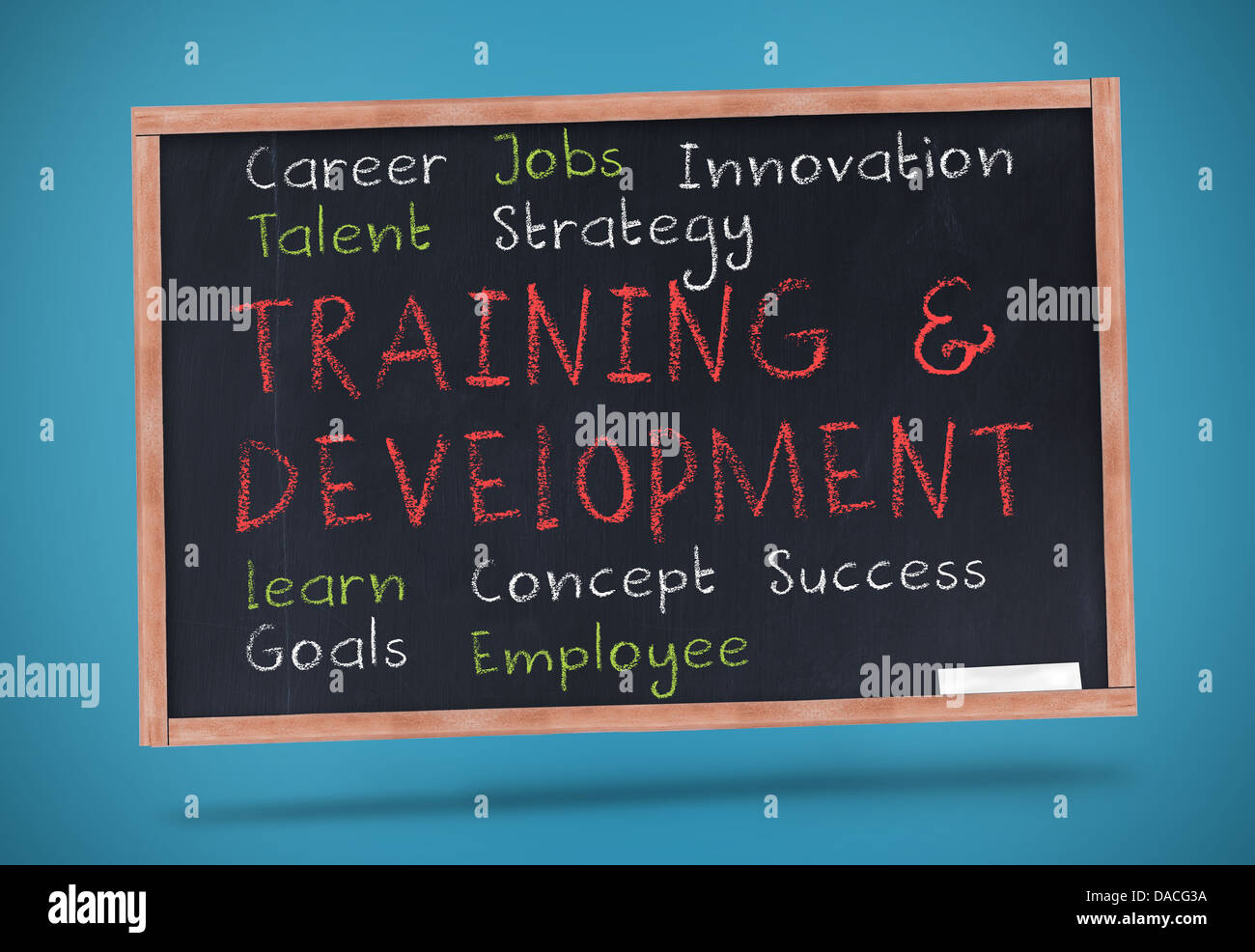 Training and development terms written on a chalkboard - Stock Image