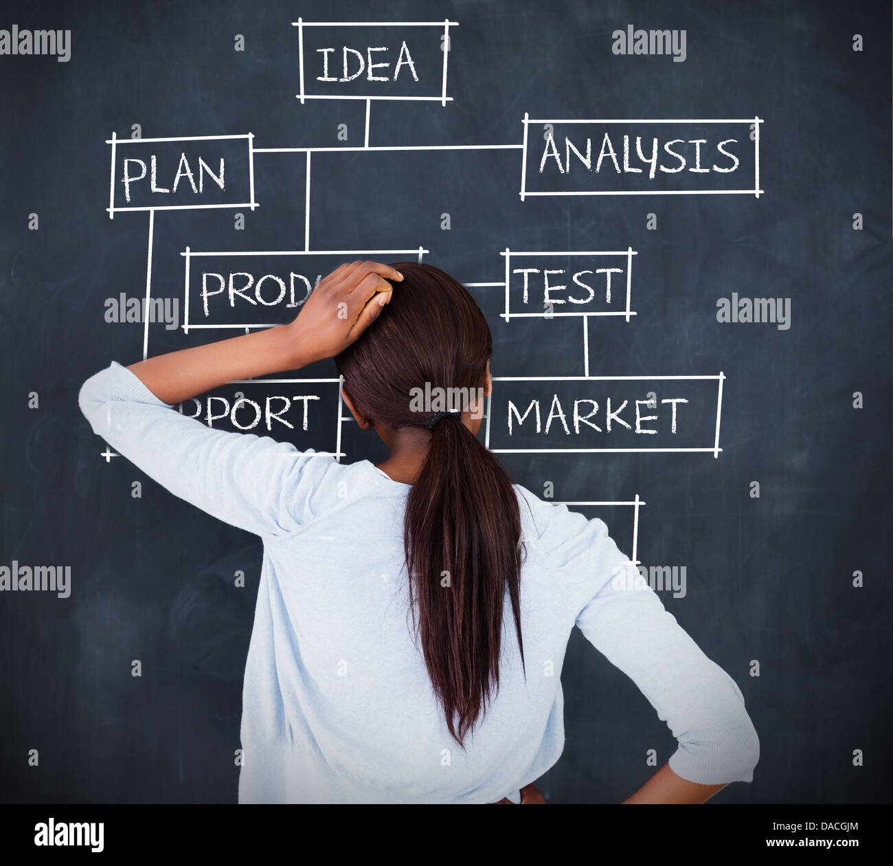 Woman drawing a flowchart about business terms - Stock Image