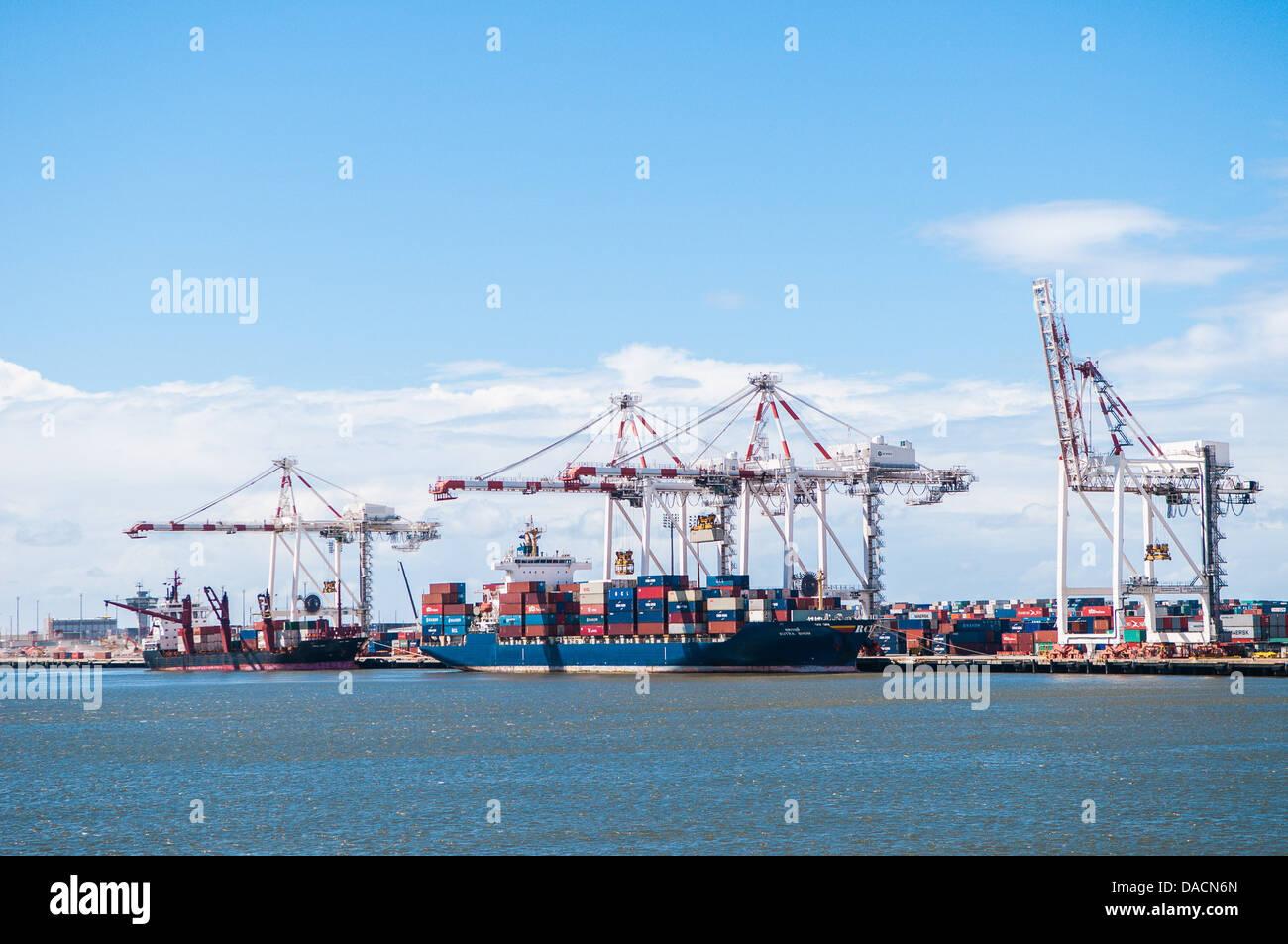 Unloading container ships, Port of Brisbane,Queensland, Australia - Stock Image