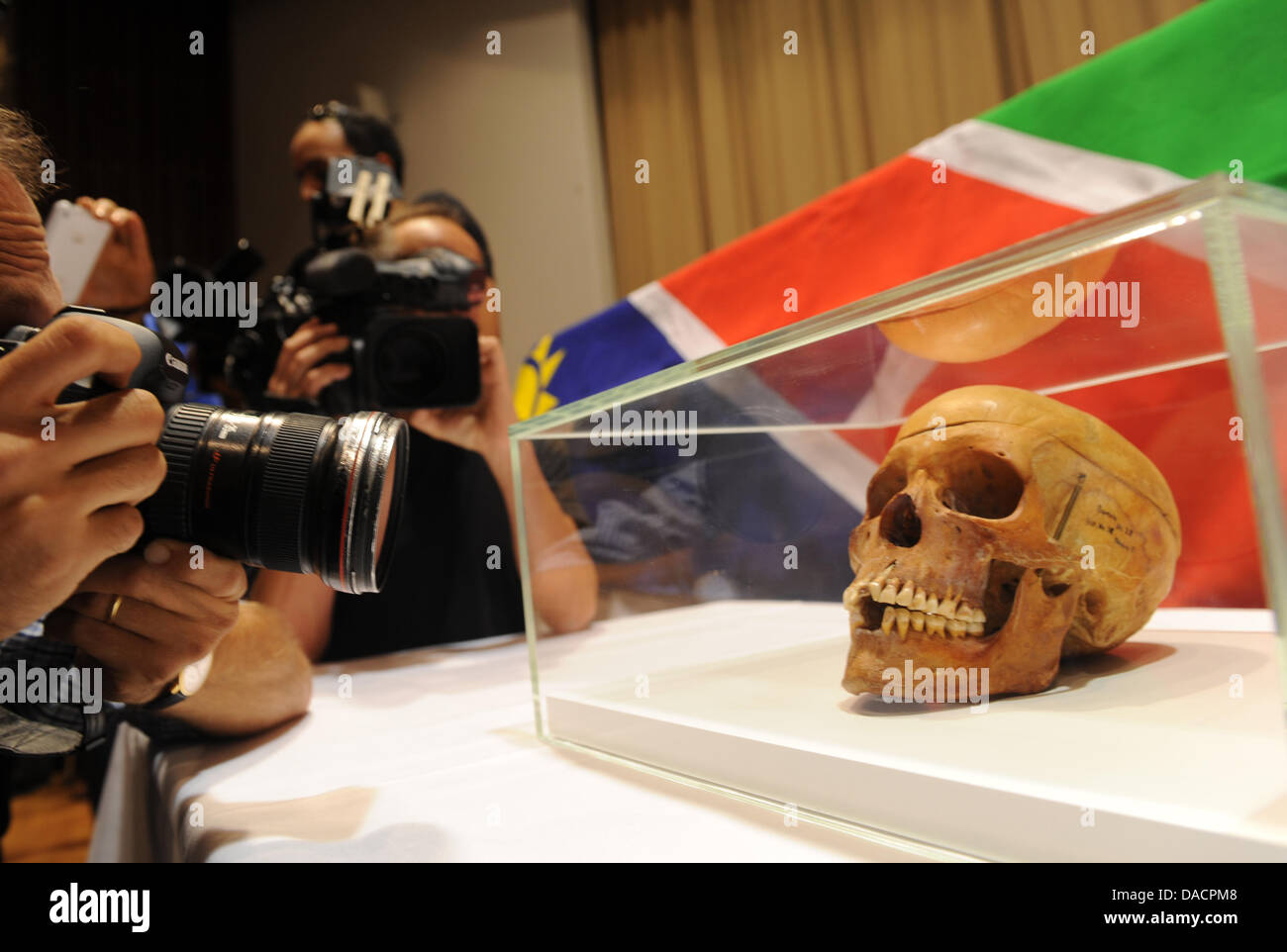 A skull is being photographed during the handover of 20 skulls to the victims' organization 'Ovaherero/Ovambanderu - Stock Image