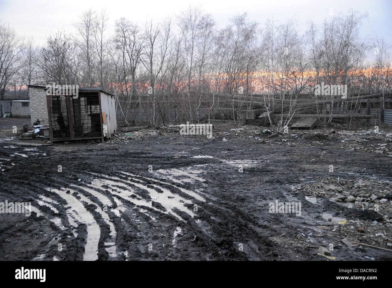 A warped and ramshackle kennel sits on the muddly grounds at the municipal animal shelter in Donezk,Ukraine, - Stock Image