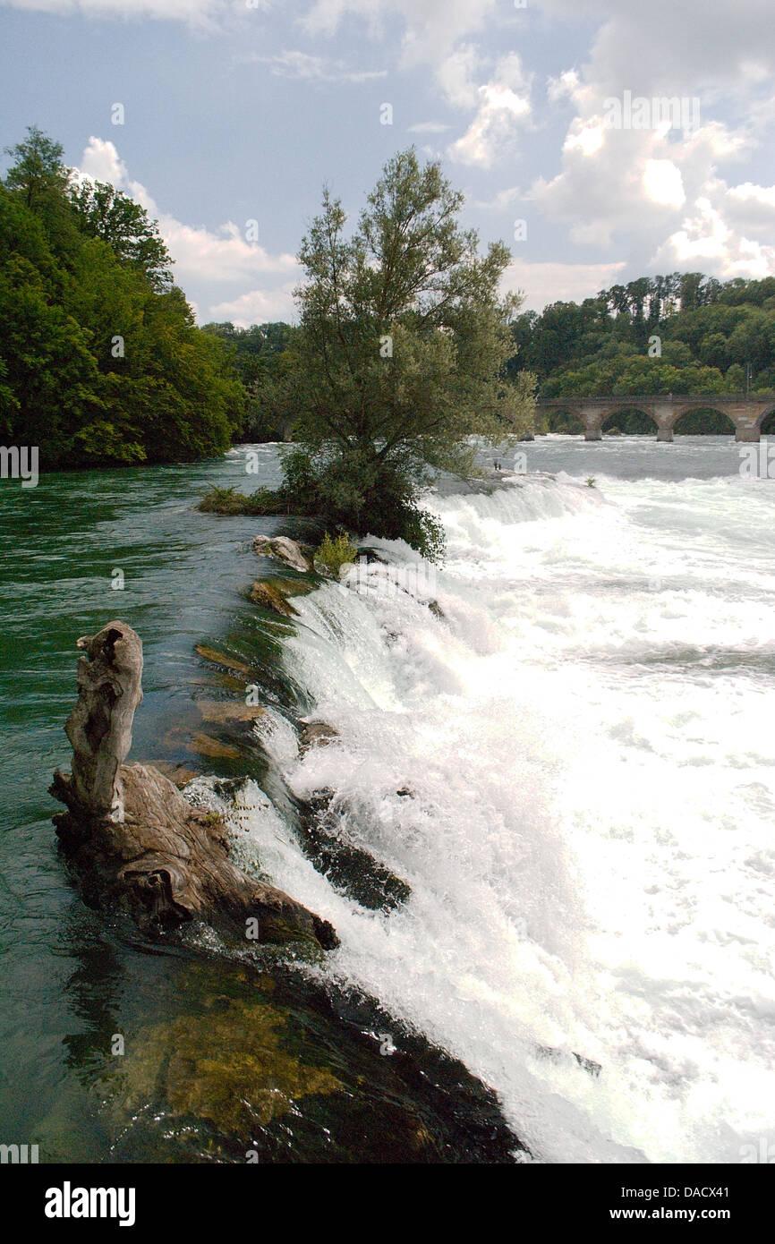Rijnfall, Swiss - Stock Image