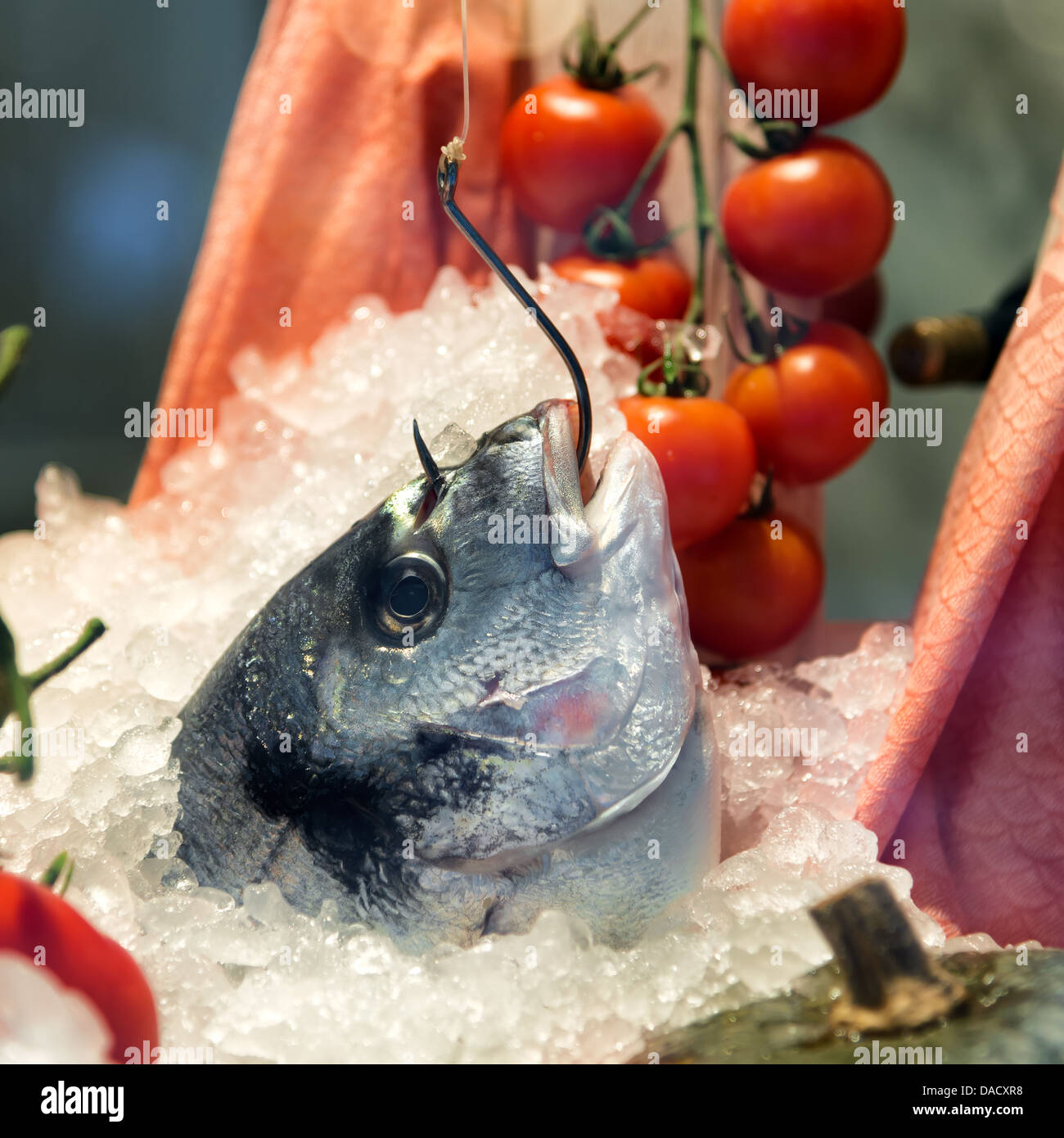 bream fish caught with hook in restaurant Stock Photo