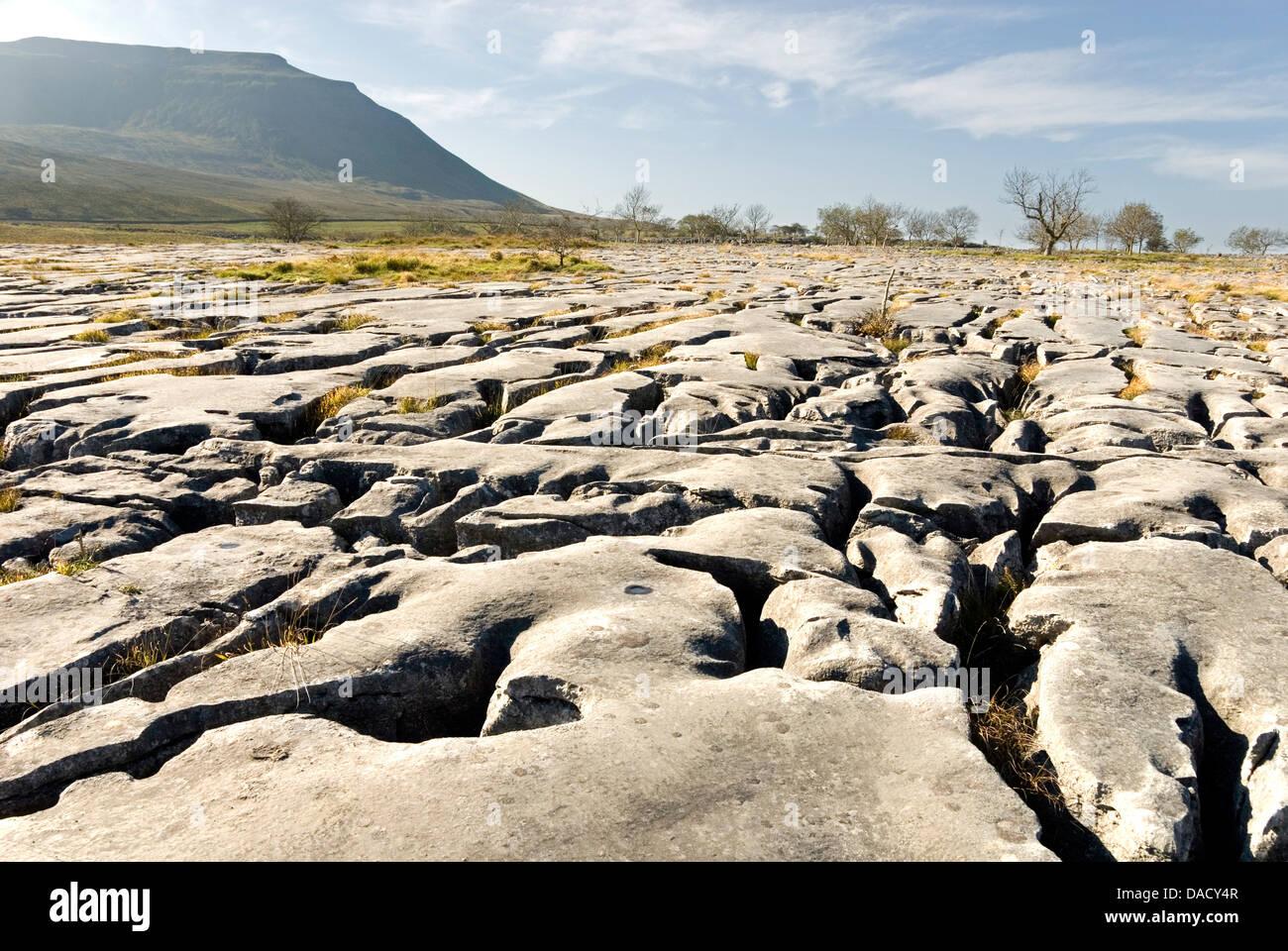 Limestone pavements above Southerscales Scars, Ingleborough, Yorkshire Dales, Yorkshire, England, United Kingdom, - Stock Image
