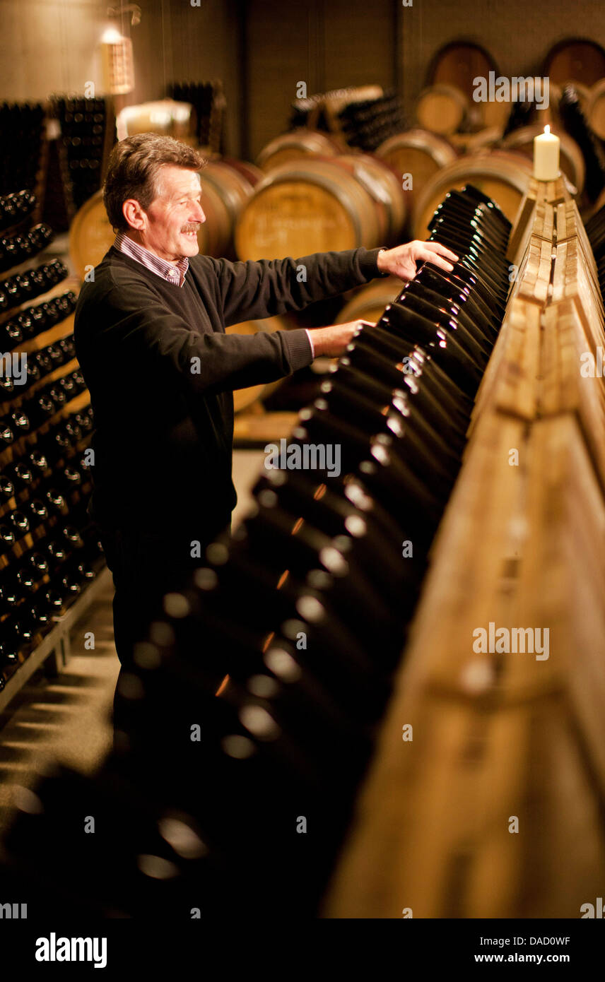 Taster Konrad Scheerbaum rotates the sparkling wine bottles at the State Vineyard Castle Wackerbarth in Radebeul, Stock Photo