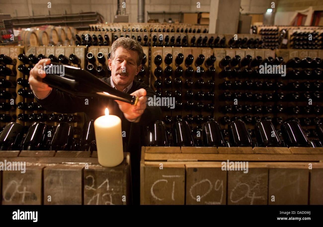 Taster Konrad Scheerbaum rotates the sparkling wine bottles at the State Vineyard Castle Wackerbarth in Radebeul, - Stock Image