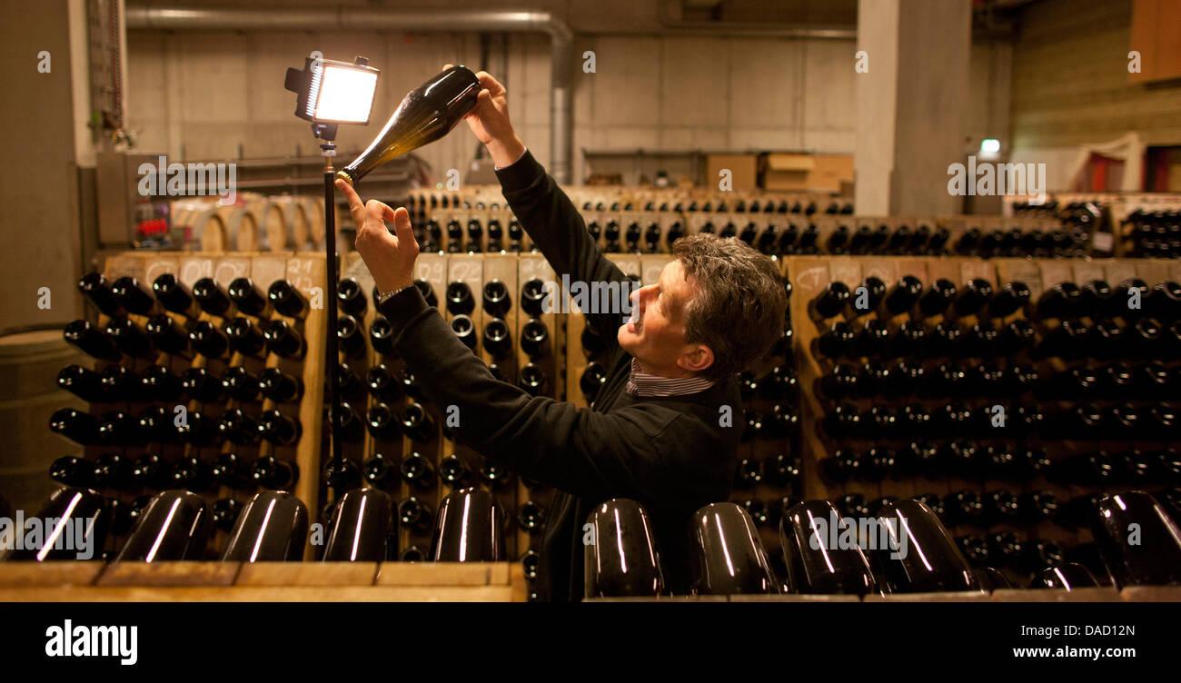 Taster Konrad Scheerbaum rotates sparkling wine bottles at the State Vineyard Castle Wackerbarth in Radebeul, Germany, - Stock Image