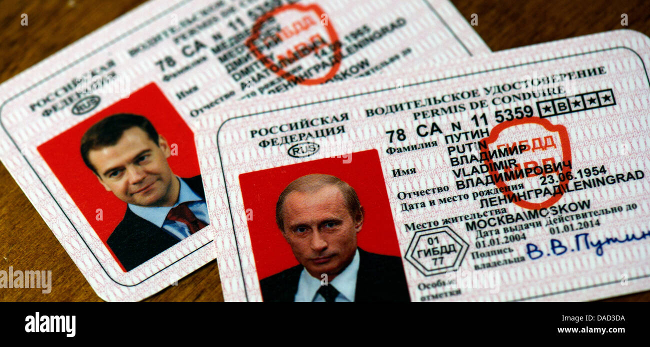 ILLUSTRATION - Faked drivers licenses of the Russian President Dmitry Medvedev (L) and the Russian Prime Minister - Stock Image