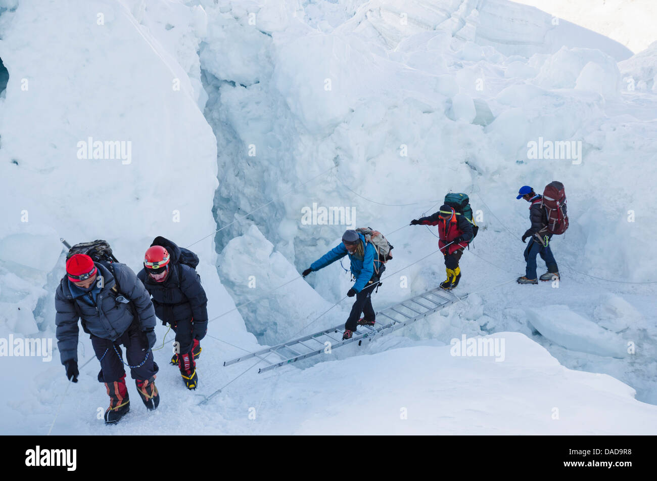 Crossing ladders on the Khumbu icefall on Mount Everest, Solu Khumbu, Sagarmatha National Park, UNESCO Site, Nepal - Stock Image