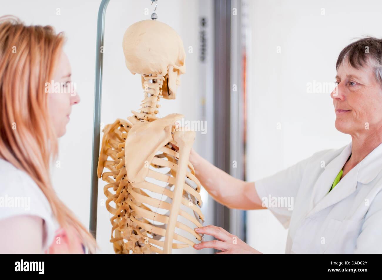 Women looking at anatomical model - Stock Image