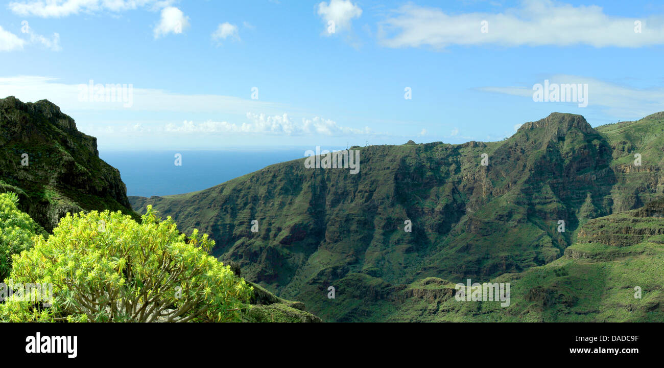 slopes of Valle Gran Rey, Canary Islands, Gomera, Valle Gran Rey - Stock Image