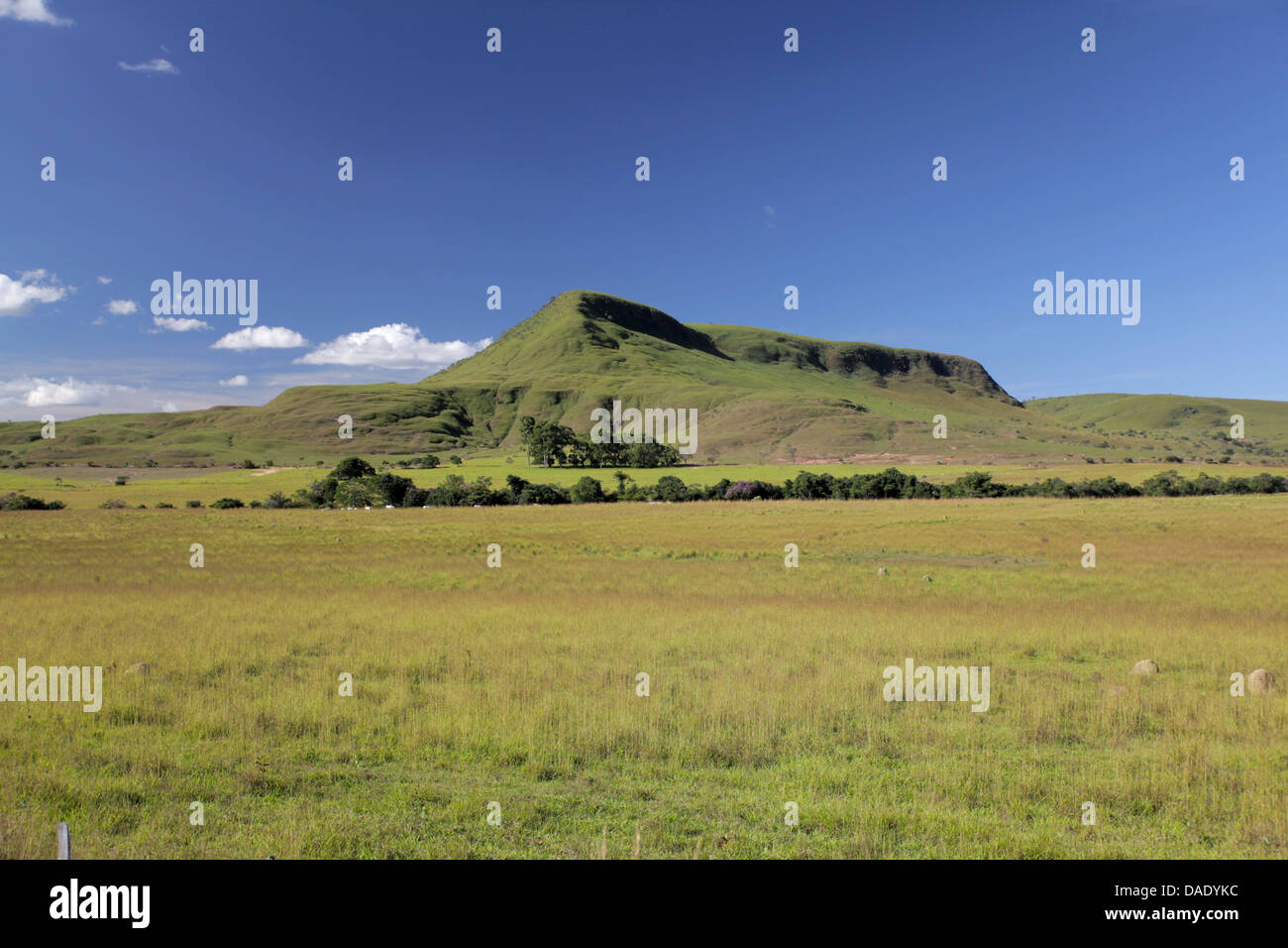 Field and mountain at Chapada dos Veadeiros in Goias state Brazil - Stock Image