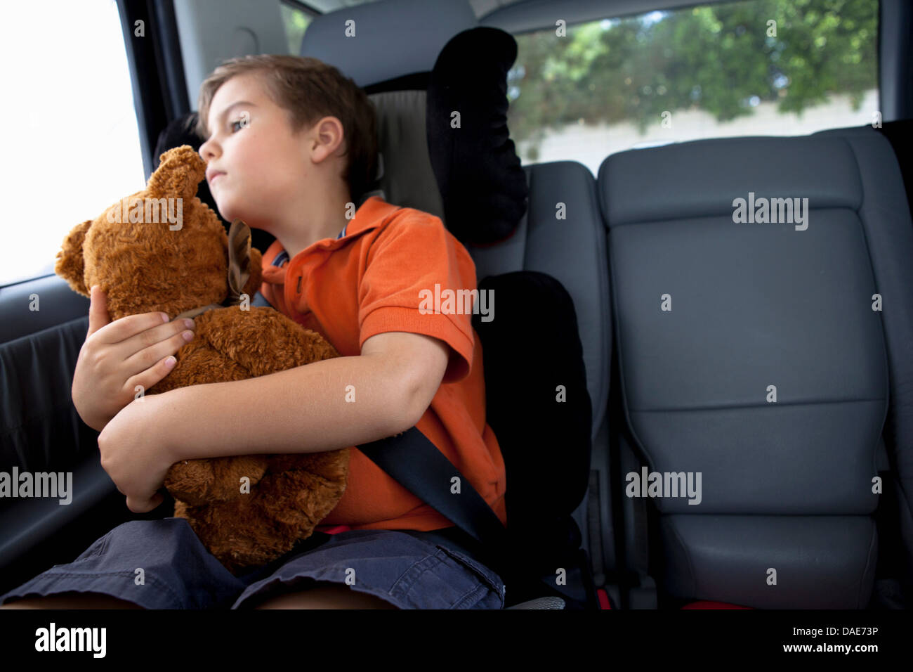 Boy looking out of car window holding teddy bear - Stock Image