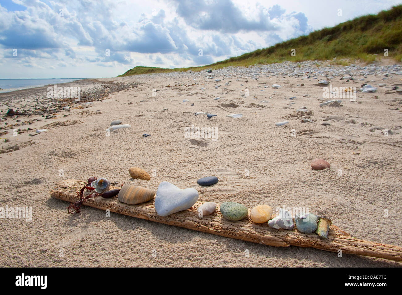 collection of noticeable stones lying on a piece of driftwood at the North Sea sand beach, Germany - Stock Image