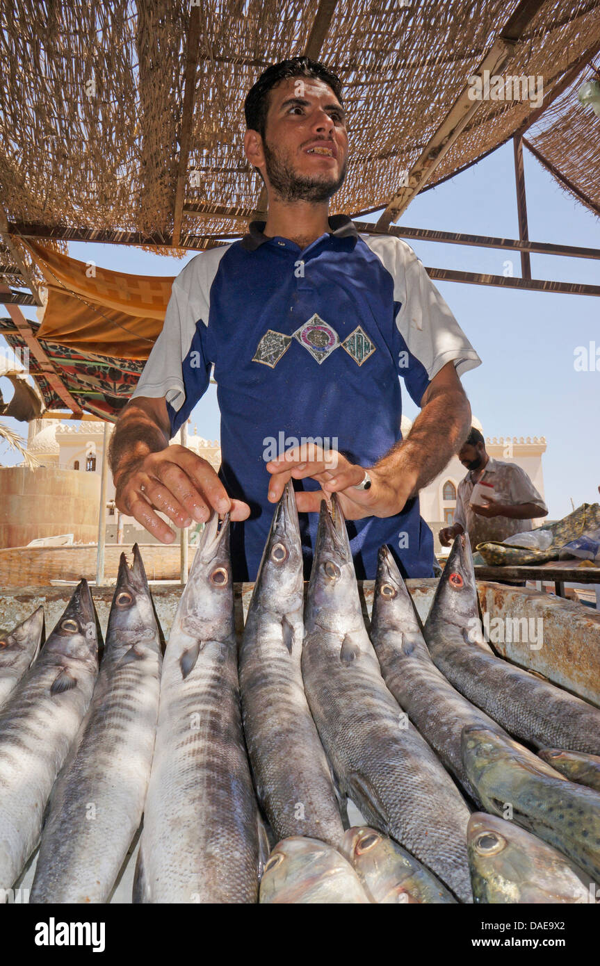 fish monger at the fish market proudly presenting his goods, Egypt, Hurghada - Stock Image
