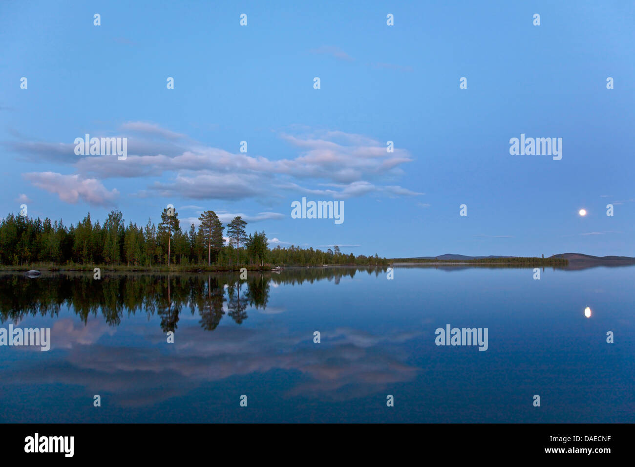 full moon mirroring in a lake in evening light, Sweden, Lapland, Norrbottens Laen, Kvikkjokk Stock Photo