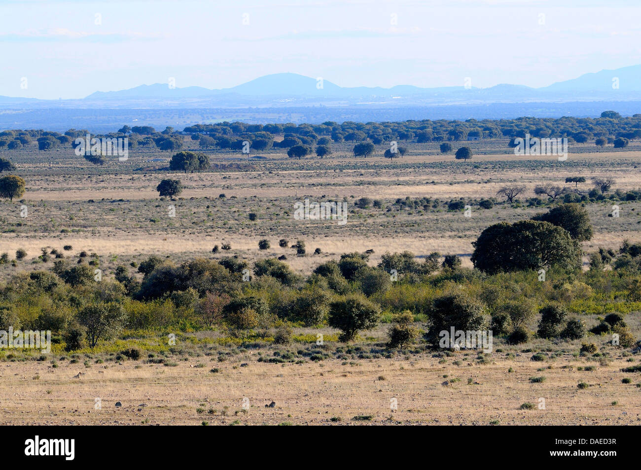 Landscape Of Central Spain Spain Extremadura Jareicieco Stock