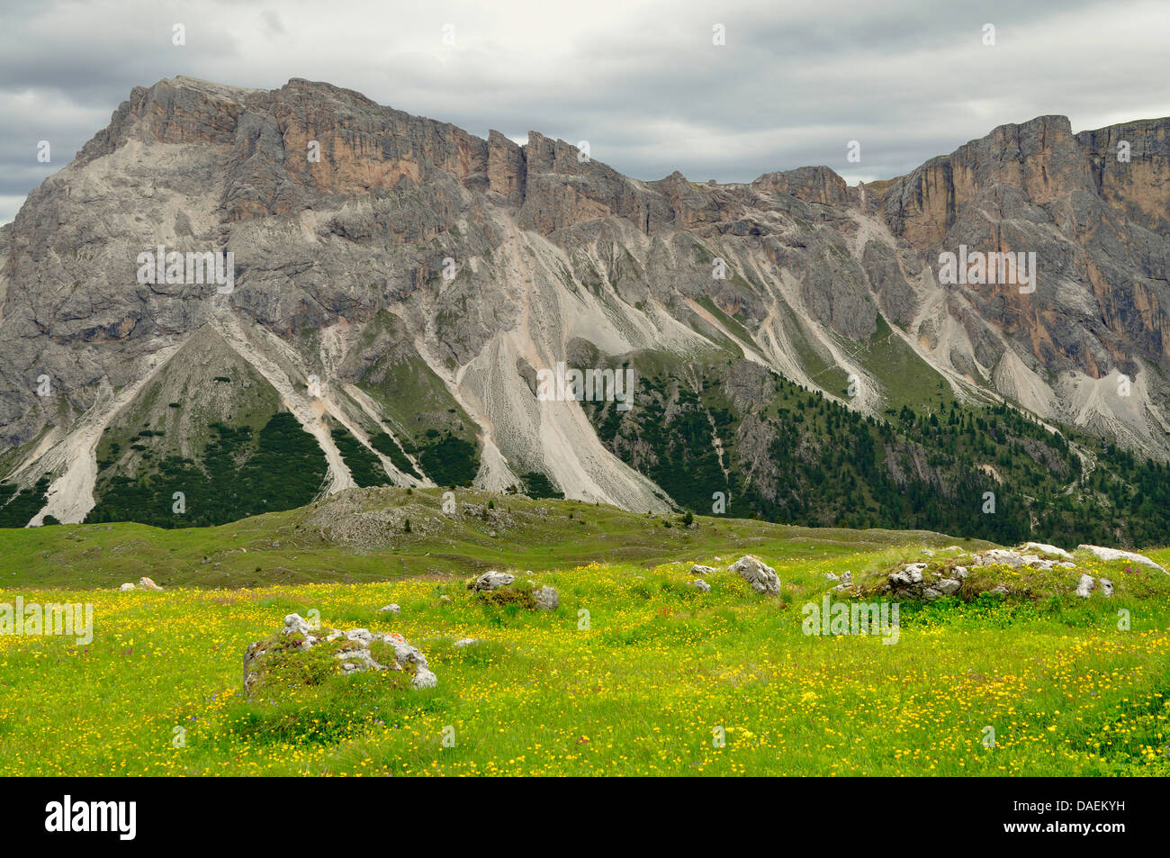 Blick to the Monte Stevia, Italy - Stock Image