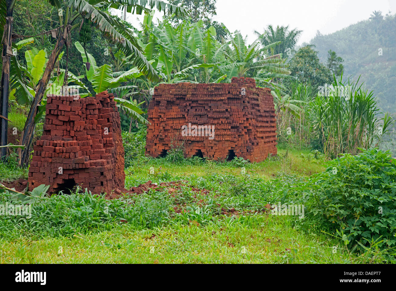 piles of mud bricks, Burundi, Bujumbura - Stock Image
