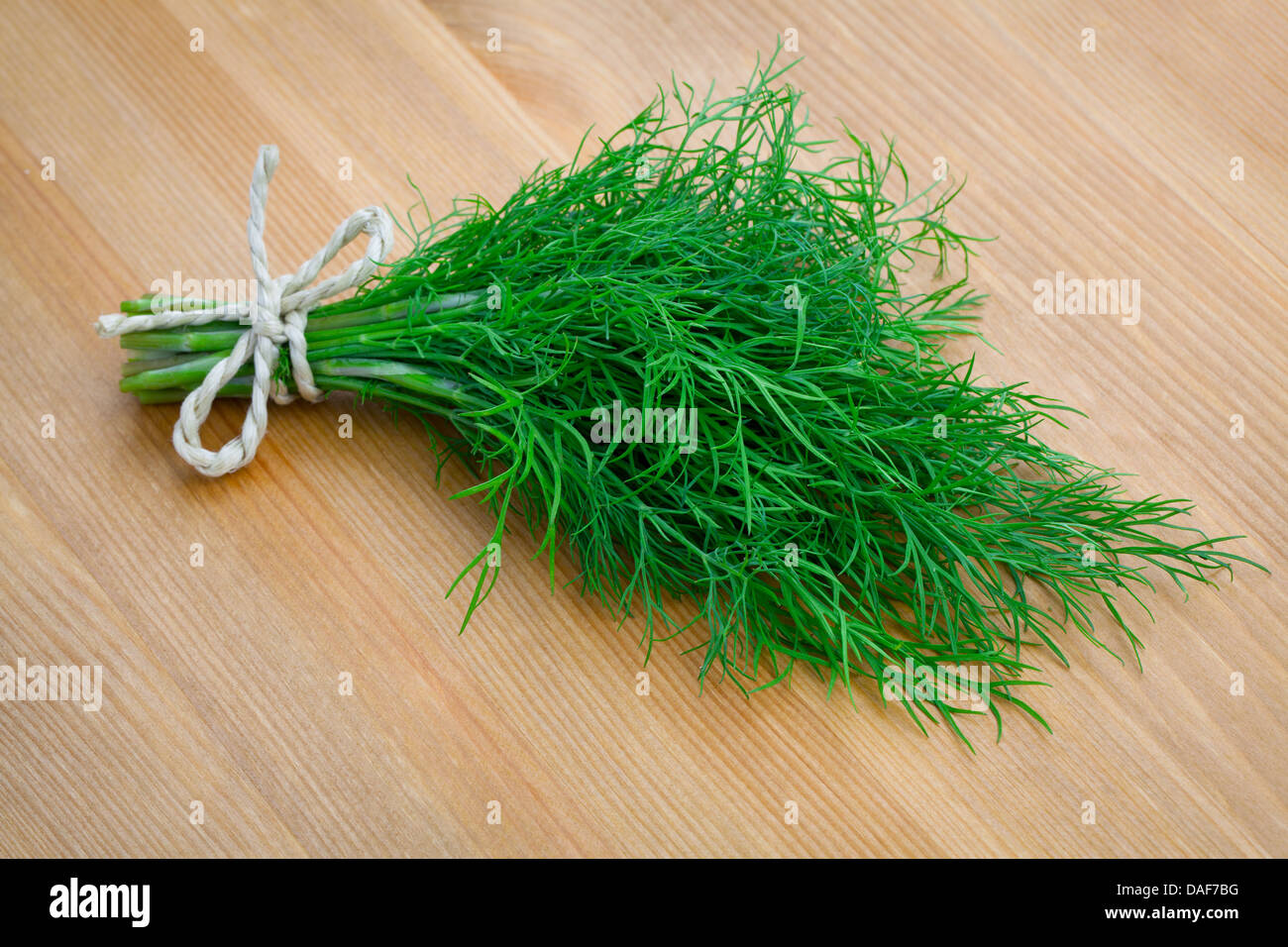 bunch fresh dill herb on wooden background - Stock Image