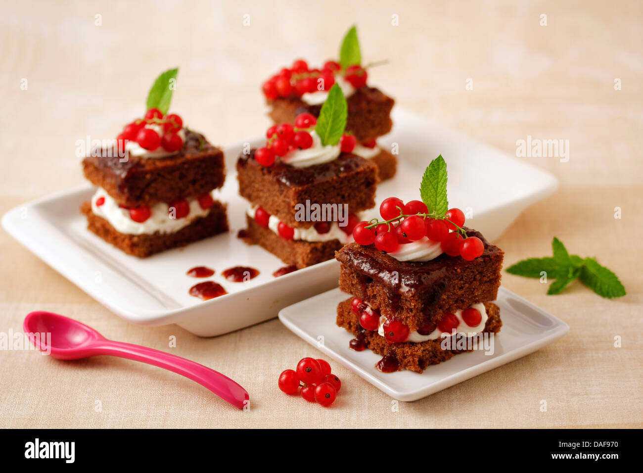 Chocolate sponge cakes with red currants. Recipe available. - Stock Image