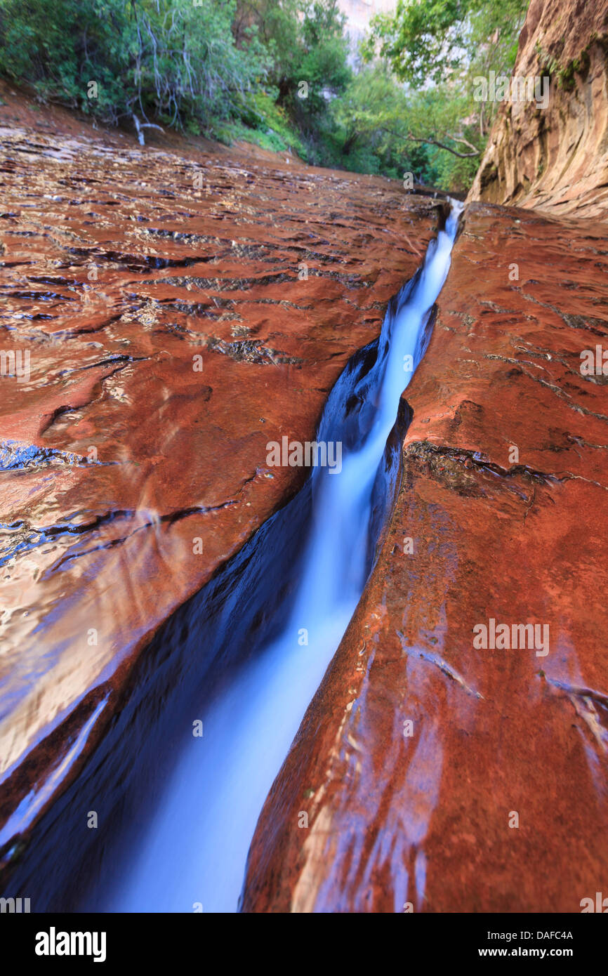USA, Utah, Zion Canyon National Park, The Subway, Slickrock and channeled water - Stock Image