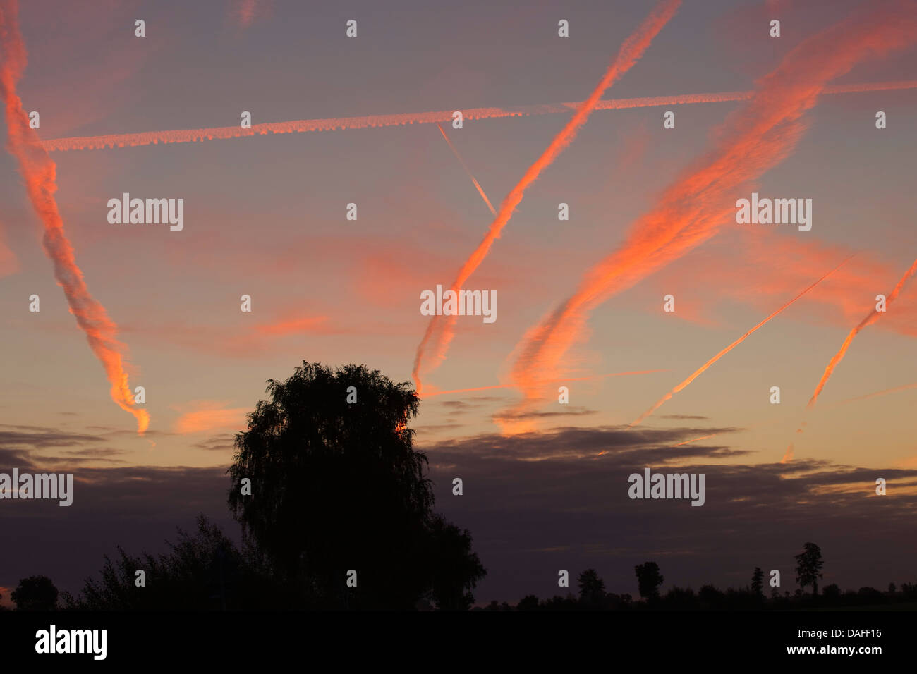 condensation trails in the sky in morning light, Germany - Stock Image