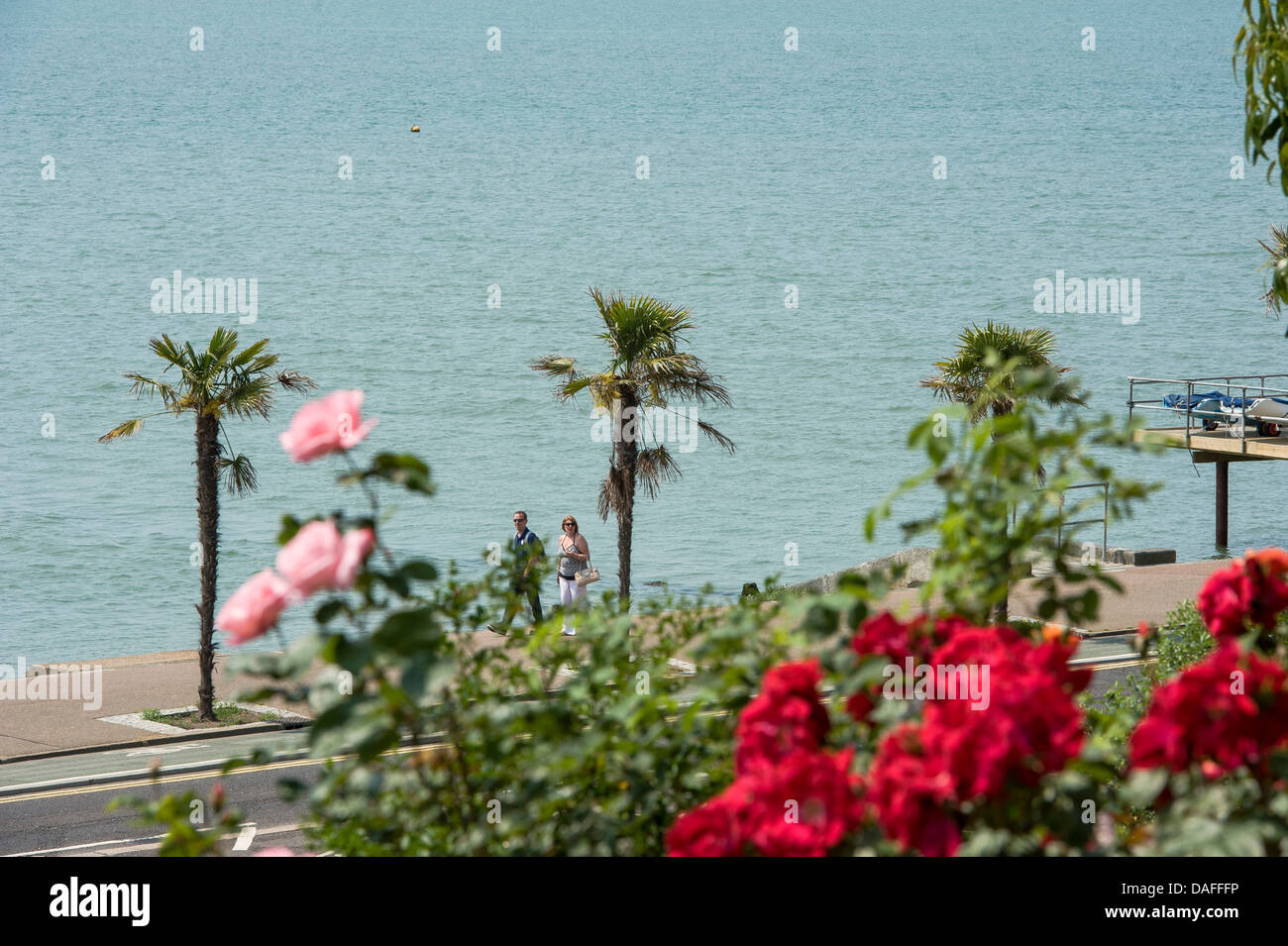 Seafront Flowers Stock Photos & Seafront Flowers Stock Images - Alamy
