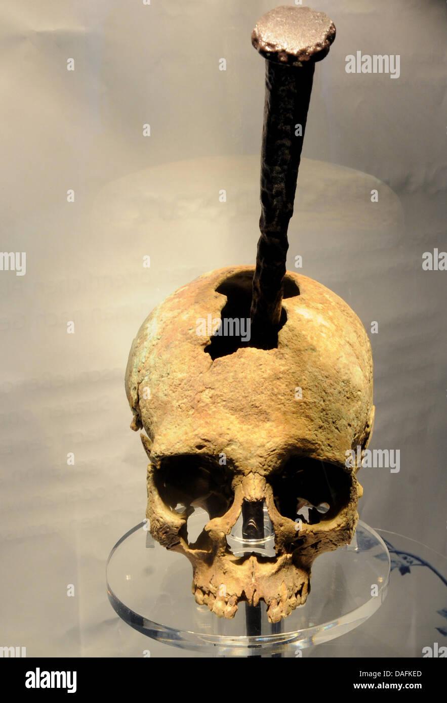 Die Reproduktion eines Frauenschädels aus dem 17. Jahrhundert der von einem riesigen Nagel durchbohrt ist liegt Stock Photo