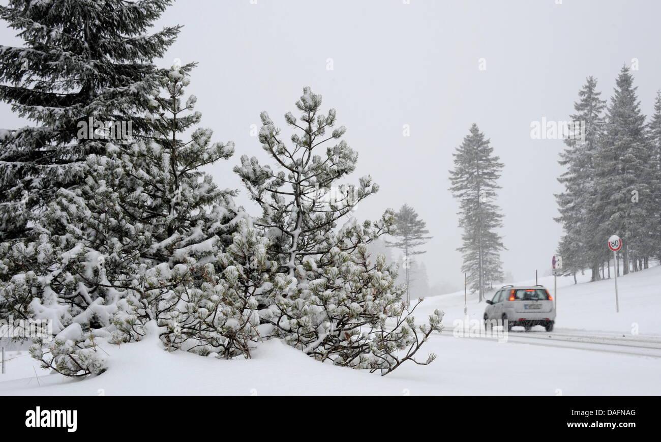 Ein Auto fährt am Dienstag (06.12.2011) in der Nähe des Spitzingsees (Oberbayern) auf einer verschneiten Straße. Vor allem in alpennahen Gebieten Bayerns fiel in der Nacht auf Dienstag nach langer Trockenheit der Schnee. Foto: Tobias Hase dpa/lby Stock Photo