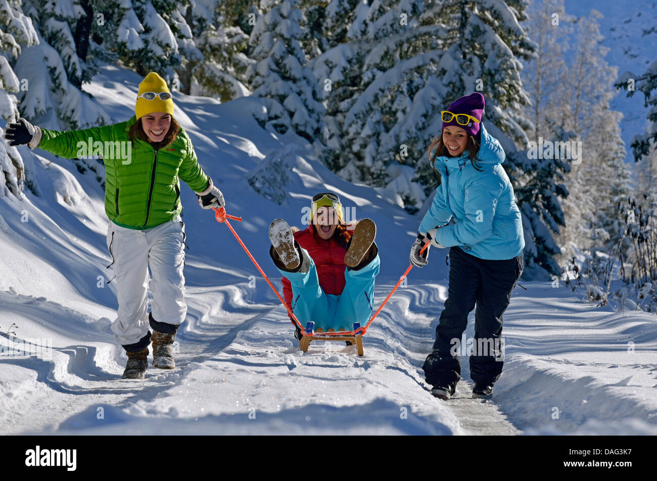 three frolic teenage girls with a sledge on a snowbound forest path, France - Stock Image