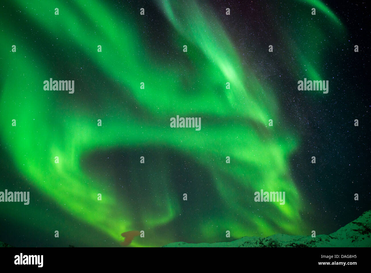 aurora bows and rays in front of the milky way, Norway, Troms, Kvaloeya, Kattfjordeidet - Stock Image