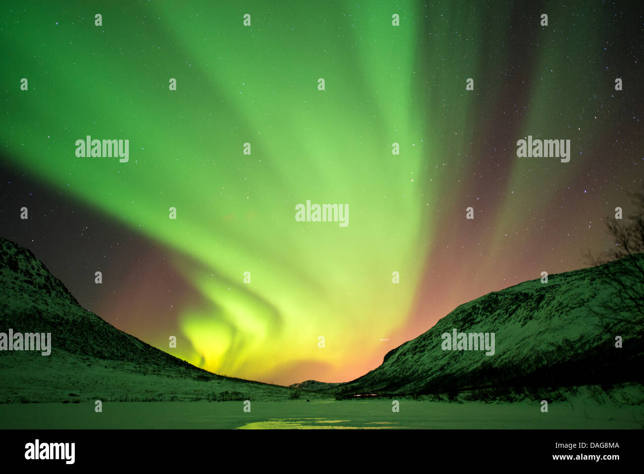 aurora curtain in front of the starry sky over snow-covered valley, Norway, Troms, Kvaloea, Kattfjordeidet - Stock Image