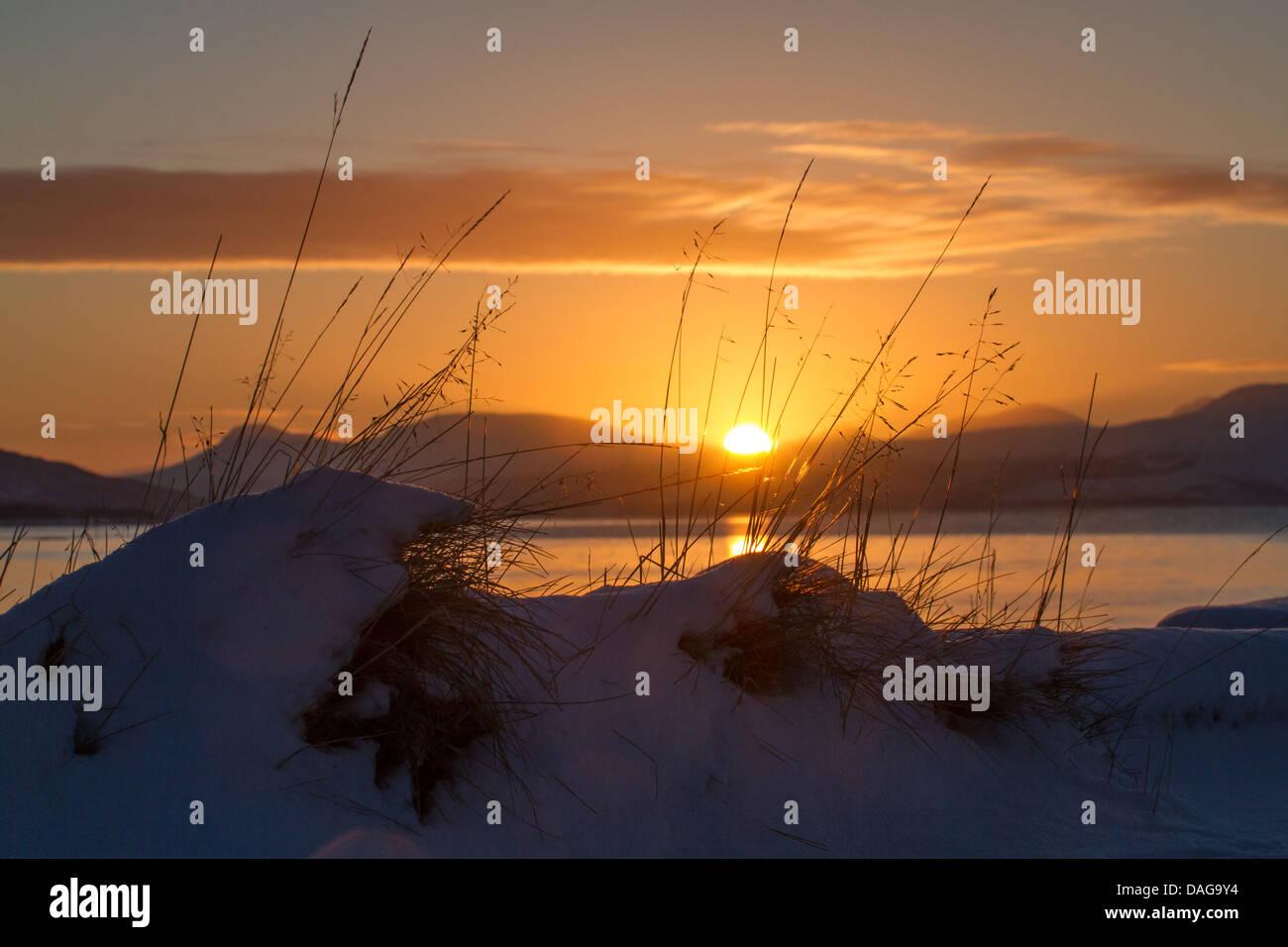 sun rise after polar night, Norway, Troms, Tromsoe - Stock Image