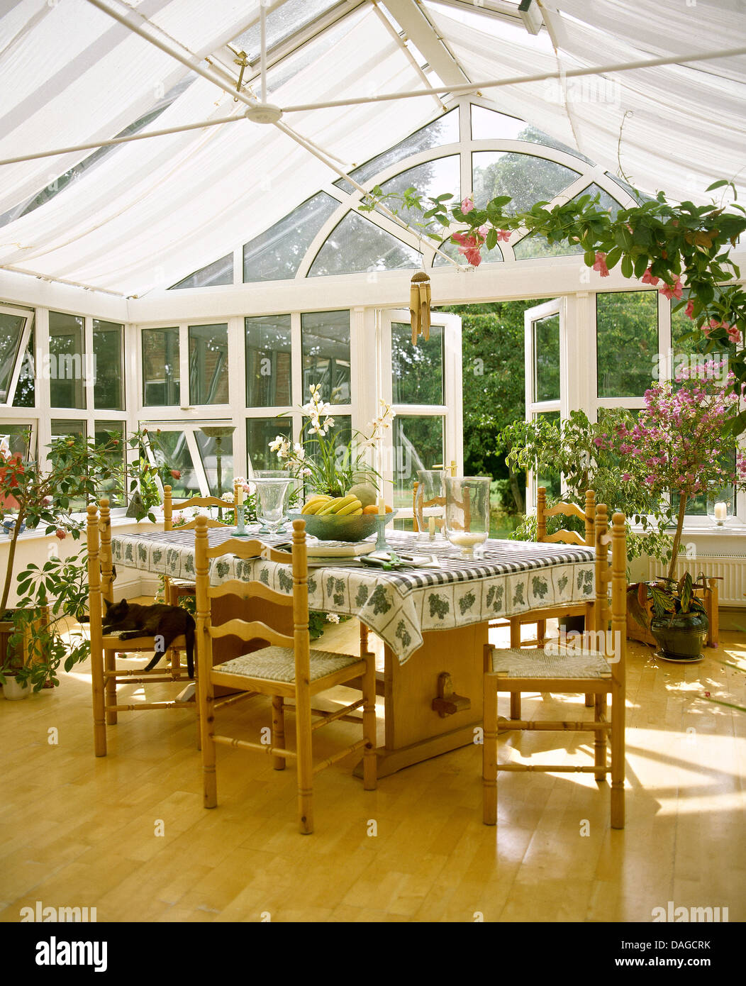 Ladder Back Chairs At Wooden Table With Green+white Cloth In Conservatory  Dining Room With Wooden Floor And Climbing Plants