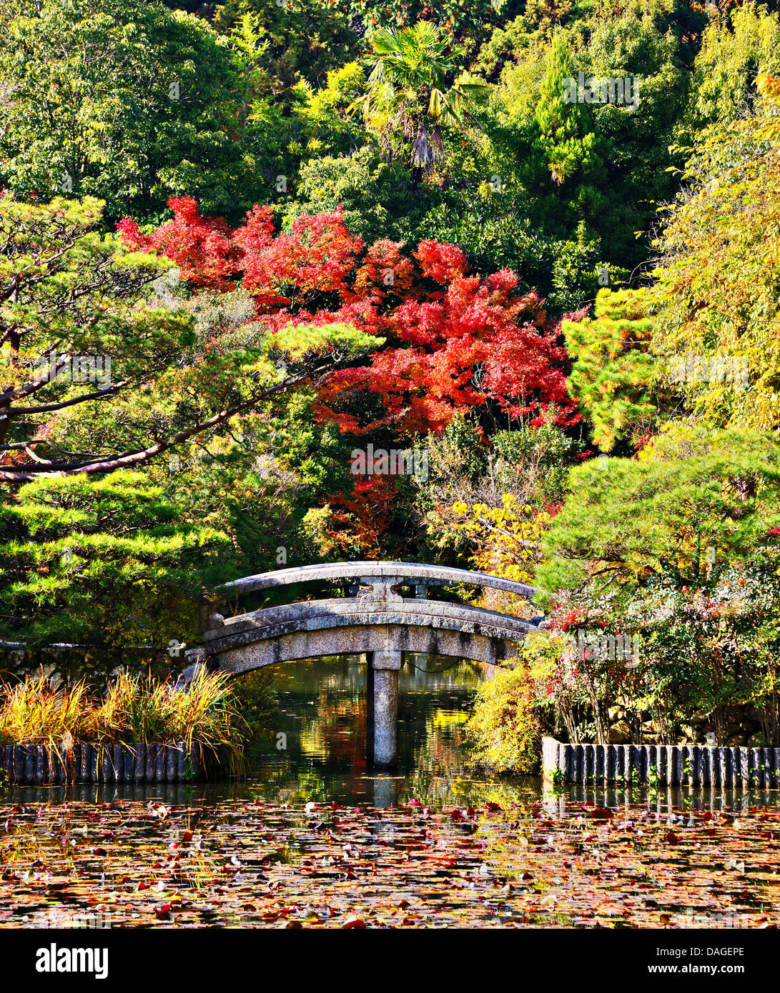 Serene bridge and pond of a Japanese Garden in Kyoto. - Stock Image