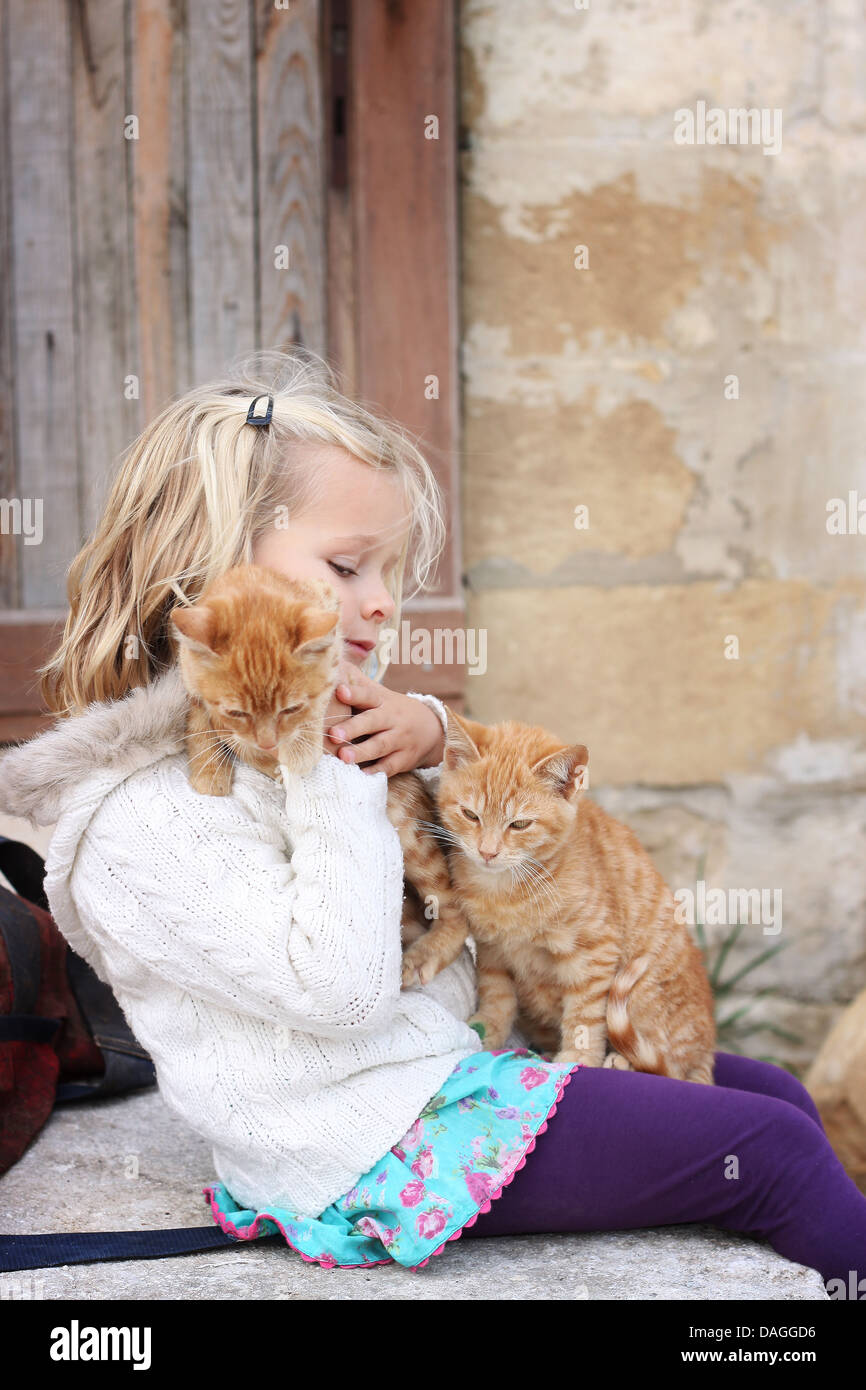 6 year old child holding two ginger cats - Stock Image