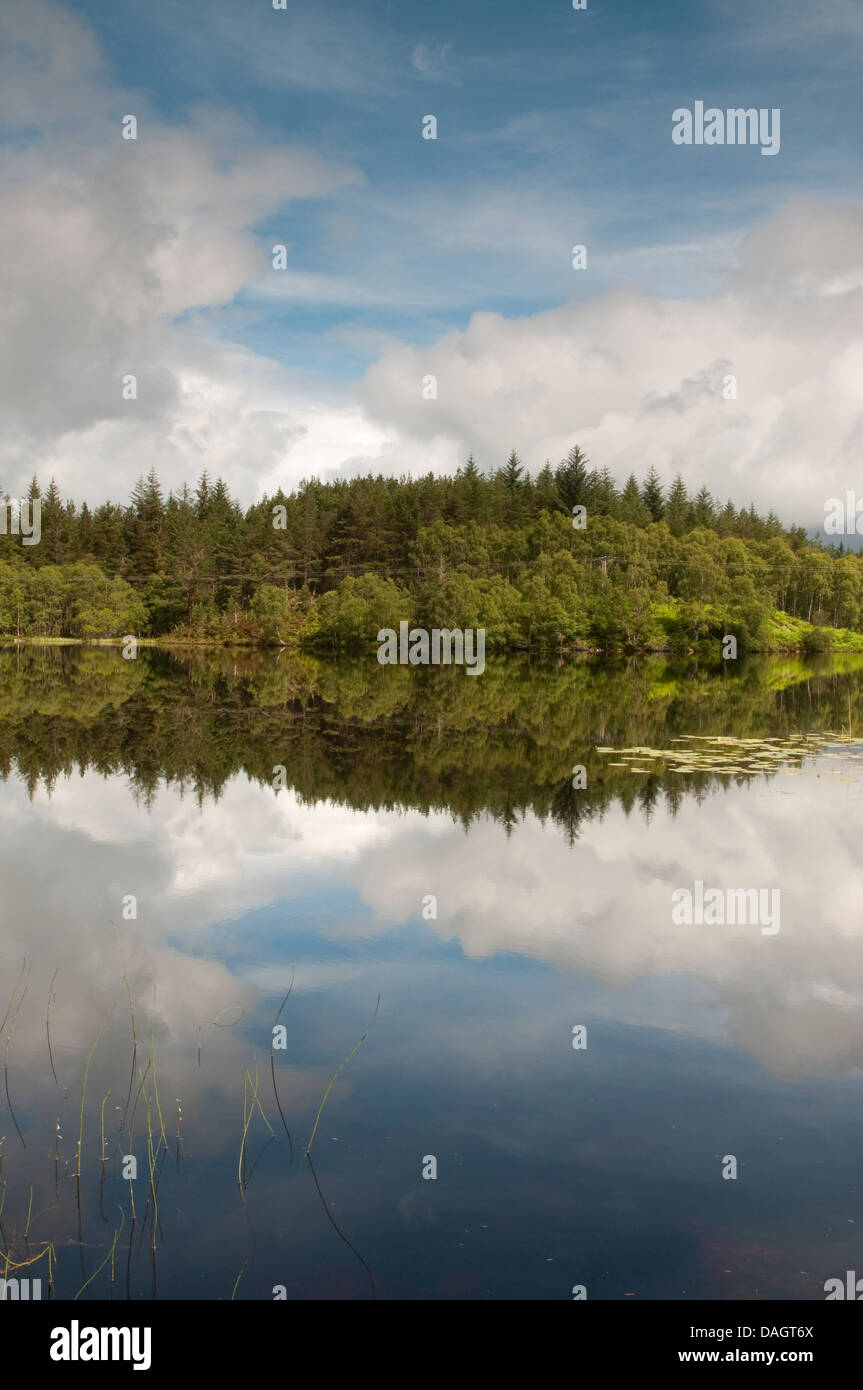 Loch Bran Stock Photo: 58147906 - Alamy