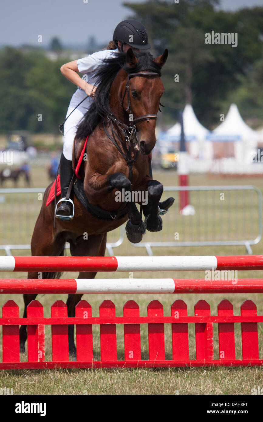 Hylands Park, Essex, UK. 13th July, 2013. Showjumping at the Duke of Essex Polo Grand Prix at Hylands Park, Essex, - Stock Image
