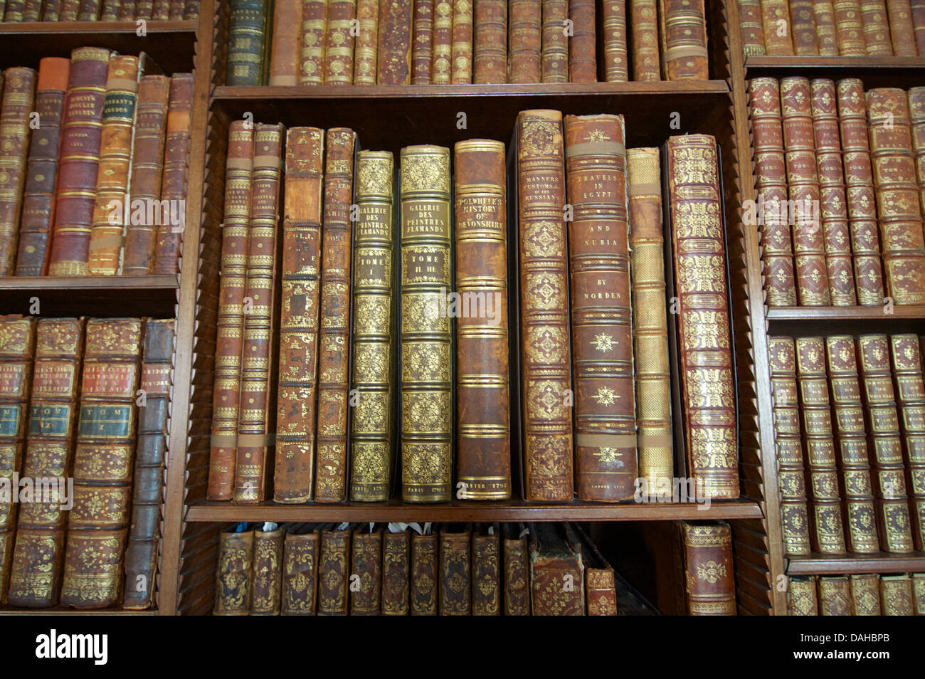 Antiquarian books an a library - Stock Image