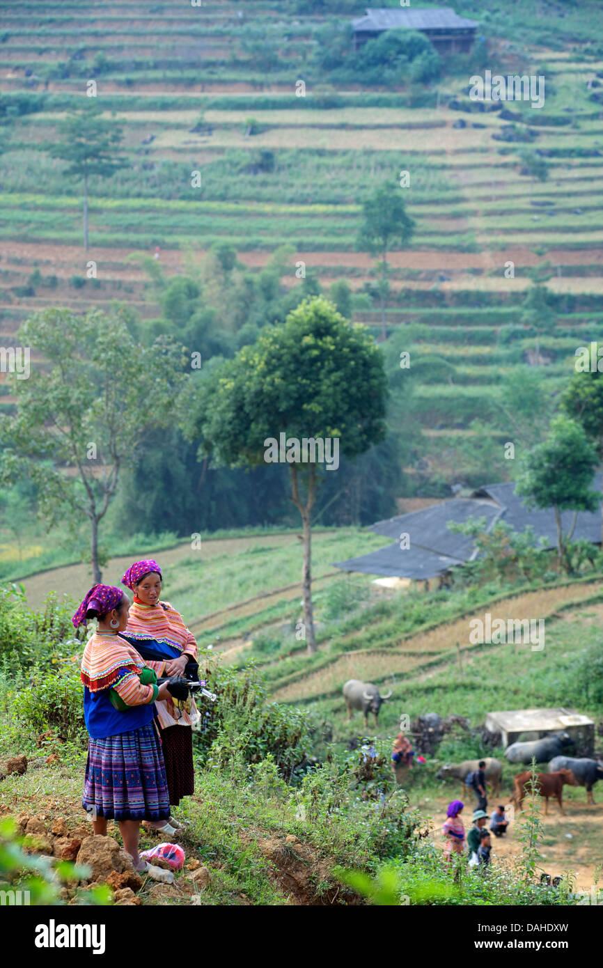Hmong women at Can Cau, near Bac Ha. Lao Cai Province, Northern Vietnam - Stock Image