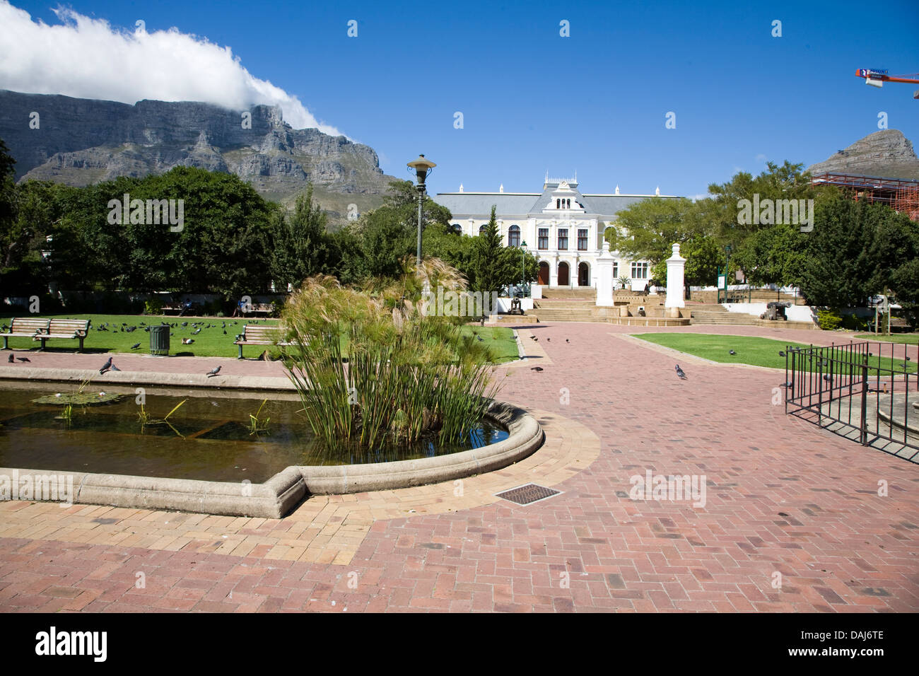 The Dutch East India Company Gardens in Cape Town. The large building in the background is the South African Museum - Stock Image