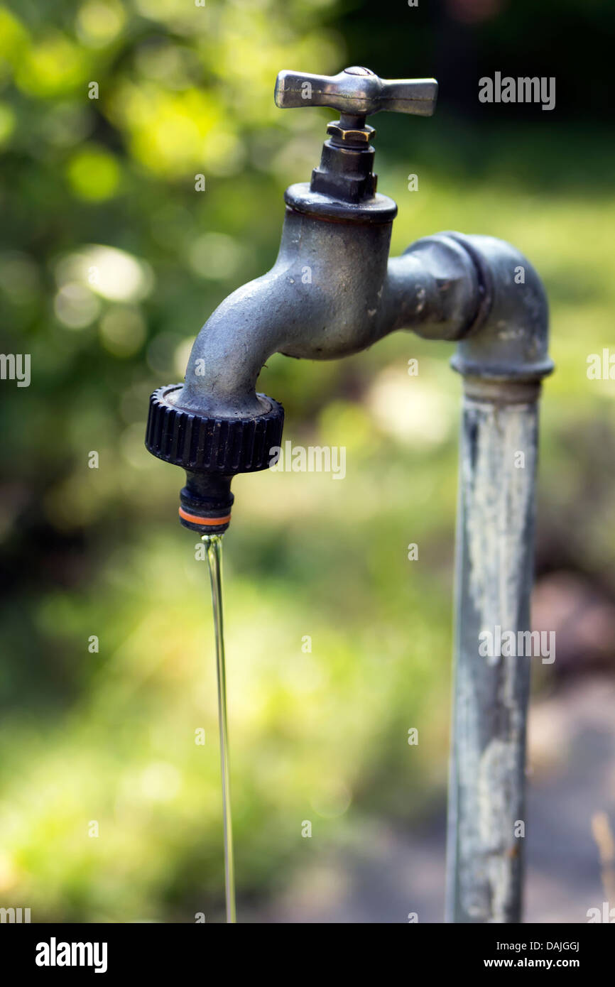 old garden tap leaking water Stock Photo: 58185810 - Alamy