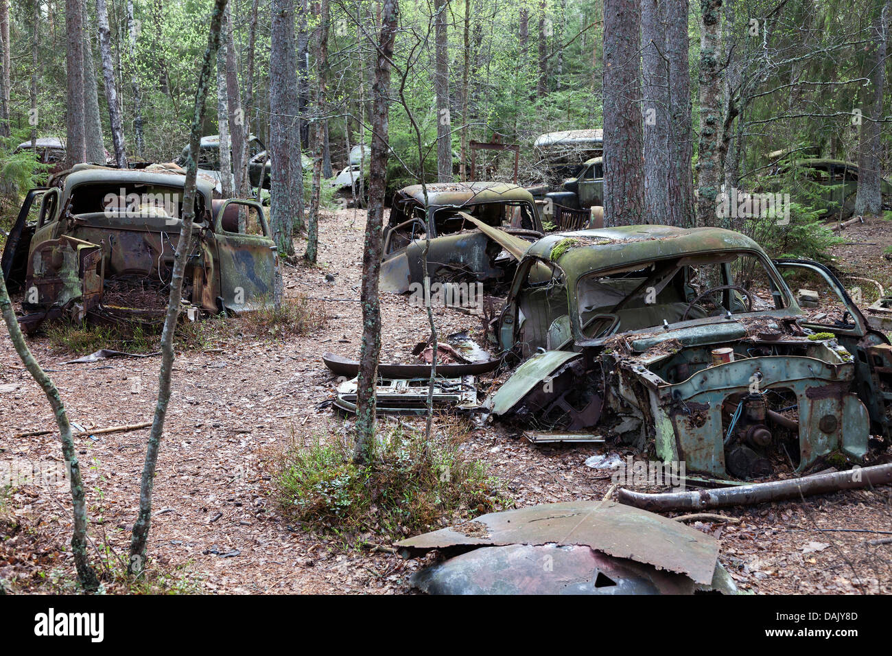 Car cemetery of Kyrkoe Mosse - Stock Image