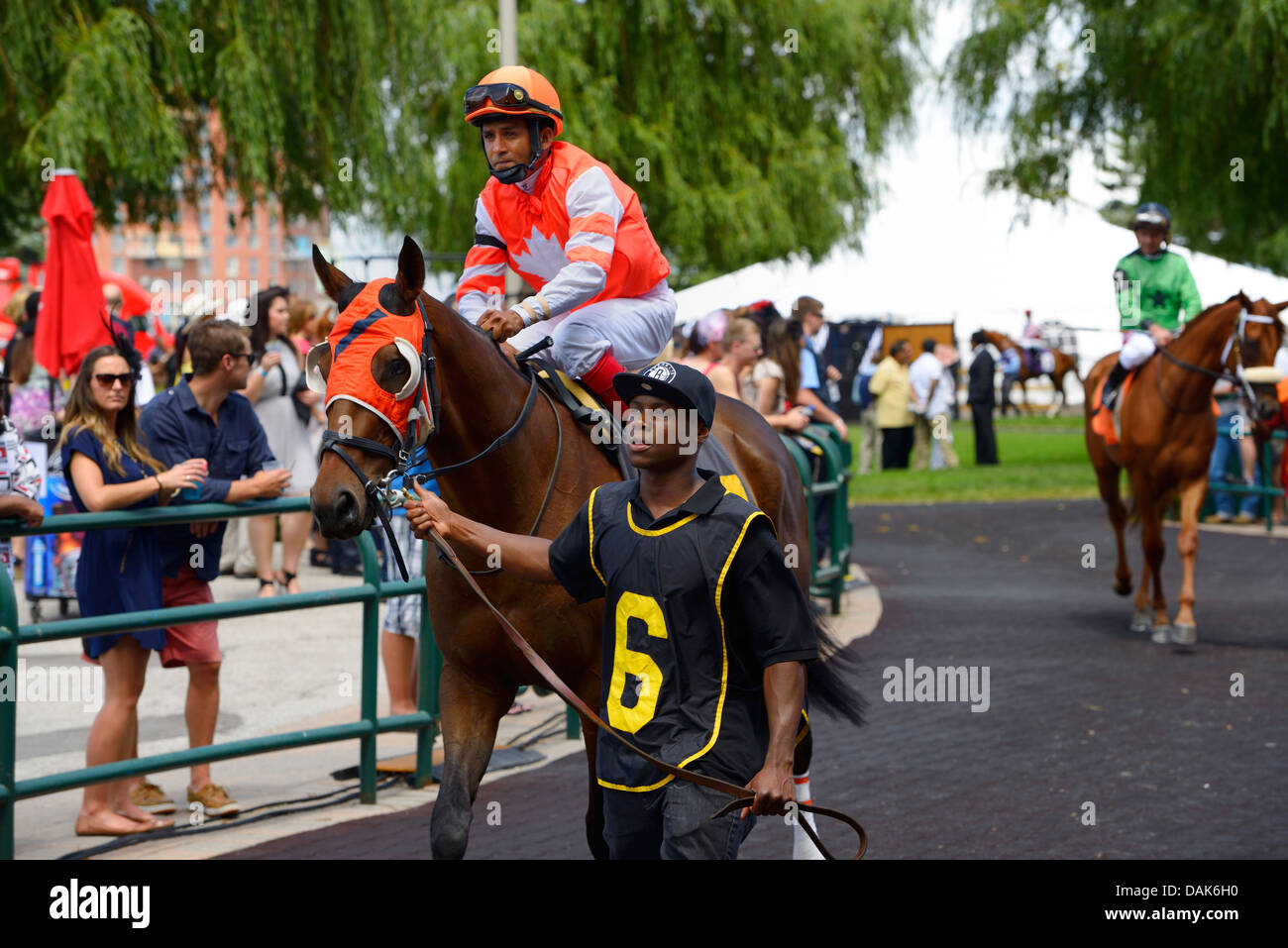 A Bit of Dan thoroughbred horse in the walking ring at the Queens Plate Woodbine Racetrack Toronto Canada - Stock Image