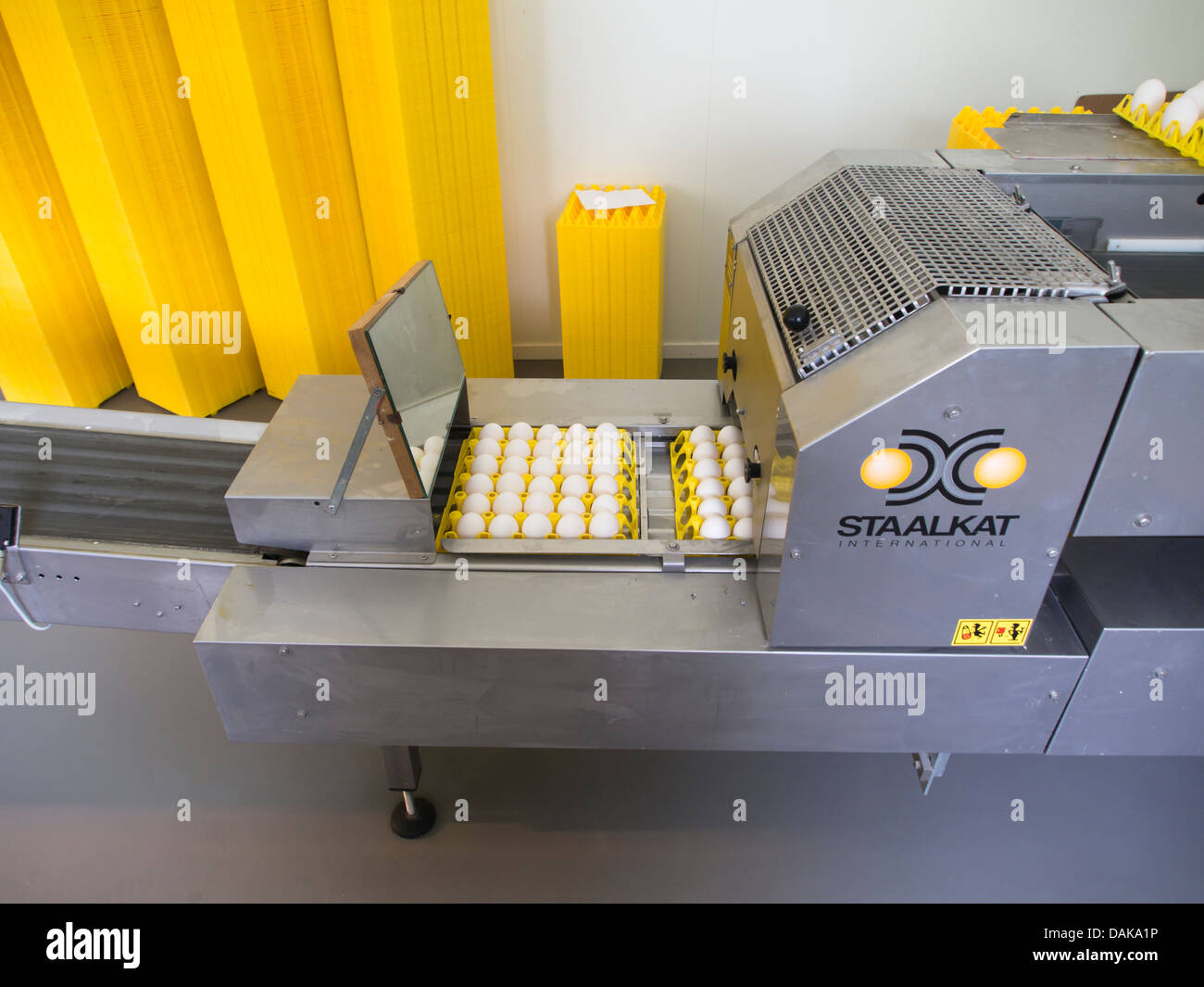 Modern egg production packaging line , industrial farming ready for transport to consumers - Stock Image