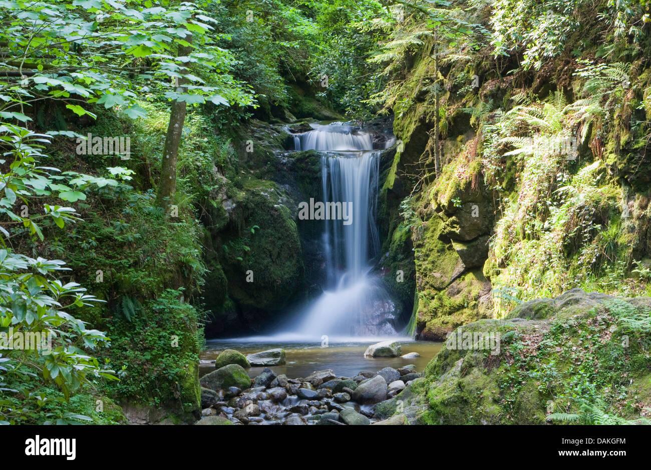 geological natural monument Geroldsau waterfall, Germany, Baden-Wuerttemberg, Baden-Baden - Stock Image