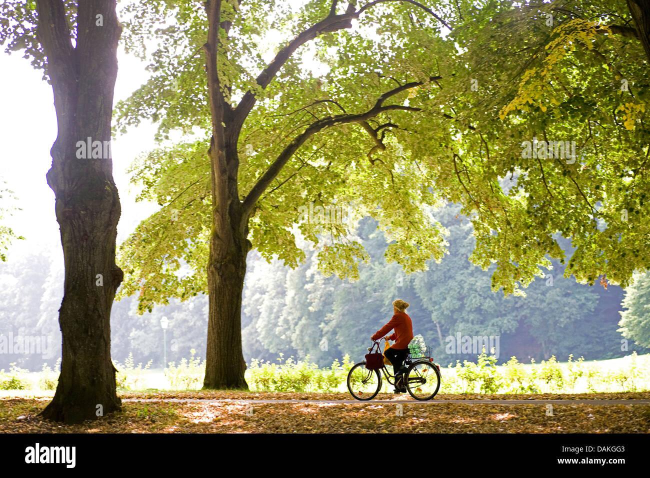 biker on autumnal Lichtentaler Allee, Germany, Baden-Wuerttemberg, Baden-Baden - Stock Image