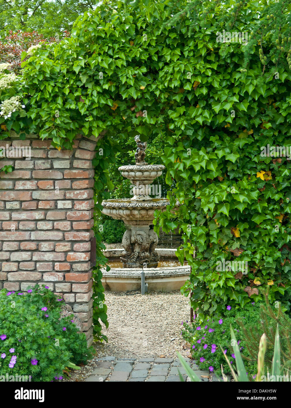 English ivy, common ivy (Hedera helix), ivy-covered garten gate, Netherlands Stock Photo