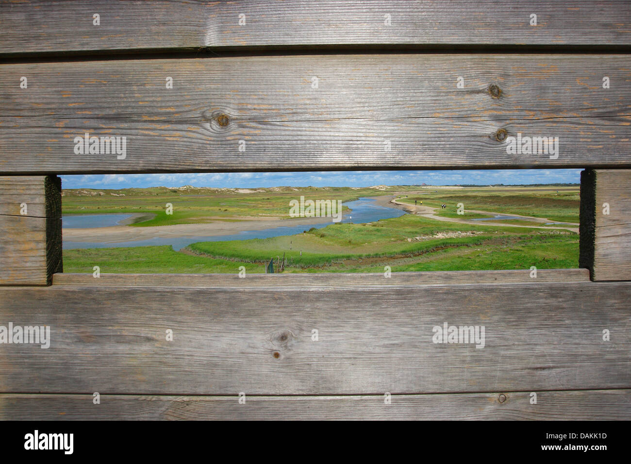 meadow and river landscape seen through a birding hide, Belgium, Zwin nature reserve - Stock Image